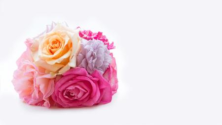 Roses Many colors isolate. on white background. Lizenzfreie Bilder