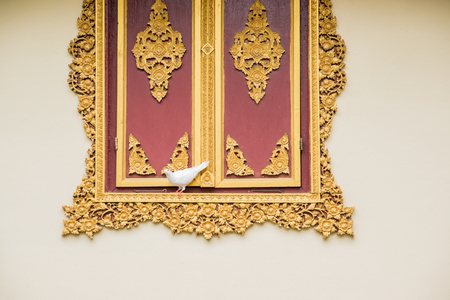 Taube mit weißen Fenstern im thailändischen Tempel