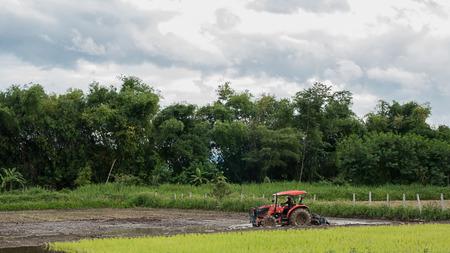 Farmer tiller in Southeast Asia.