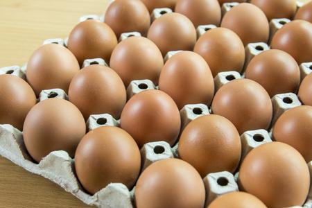 An eggs in a panel Lizenzfreie Bilder