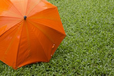 Orange umbrella on green grass Lizenzfreie Bilder