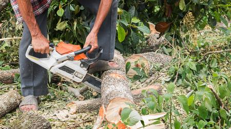 Close-up sawing the wood. Lizenzfreie Bilder