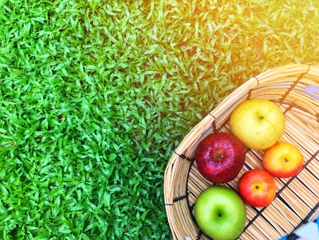 Apple variety In the basket on the grass