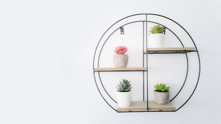 Many types of cactus Decorated on the white wall shelf. Stock fotó