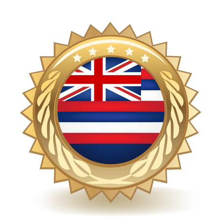 State Of Hawaii Gold Badge