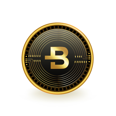 Bytecoin Cryptocurrency Coin Isolated