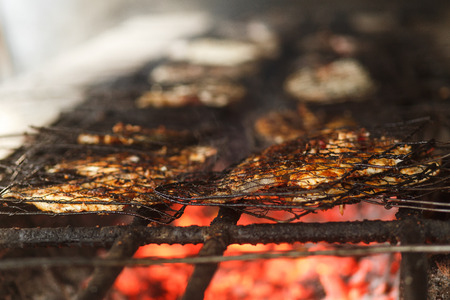fry fish on a grill