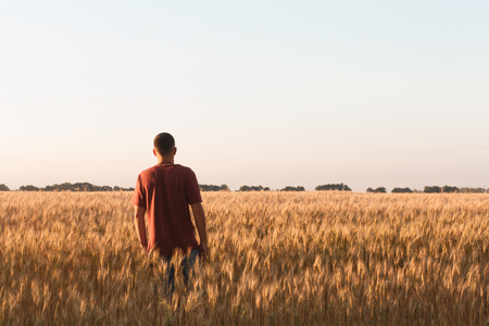 man watch sunset in field of weat