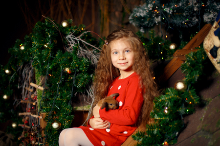 Portrait of cute little girl holds rabbit in her hands. Christmass decoration. Holidays concept.