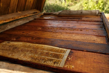 Topside of closed wooden beehive. Collect honey. Beekeeping concept. Stockfoto