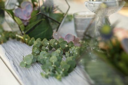 Florarium with fresh succulent and rose flowers festive table decoration. Event fresh flowers decoration. Florist workflow. Wedding banquet design. 스톡 콘텐츠
