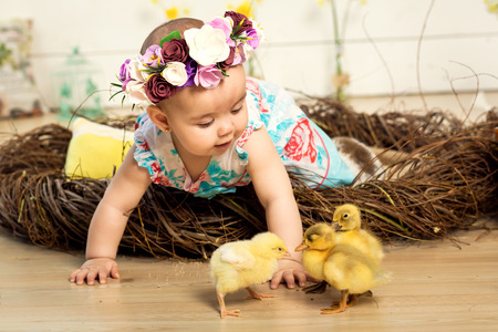 A happy little girl in a dress with flowers on her head is sitting in a nest and cute fluffy Easter ducklings and a white Easter bunny are walking next to her.