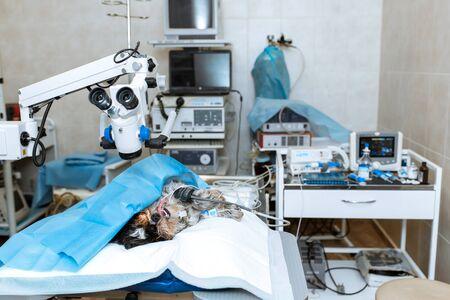 Perro bajo anestesia se encuentran en la mesa de operaciones en la sala de operaciones. Operación de cirugía de perro.
