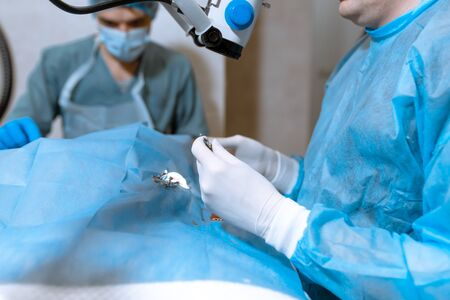 A professional ophthalmologist performs eye surgery with a microscope. The doctor inserted the dilator into the eye, washes and removes pus with a syringe. Endoscopic eye surgery. medical equipment.