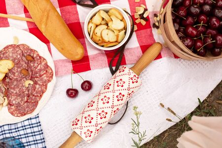 Summer outdoor picnic party. Food, honey and fruits lay on checkered blanket.