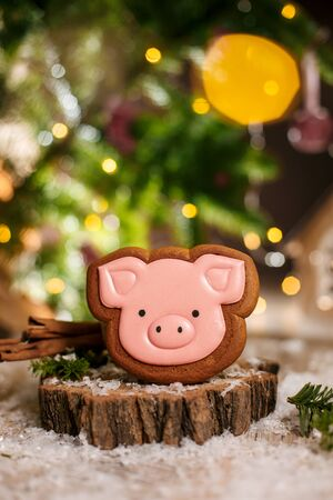 Holiday traditional food bakery. Gingerbread pink pig head in cozy warm decoration with garland lights.