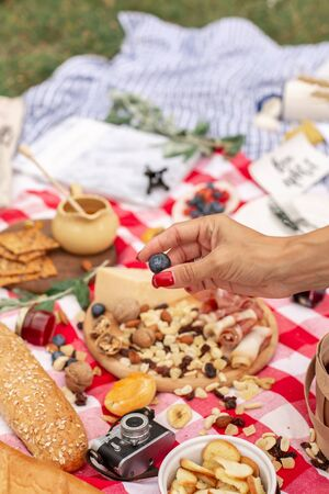 Summer outdoor picnic party. Food, honey and fruits lay on checkered blanket