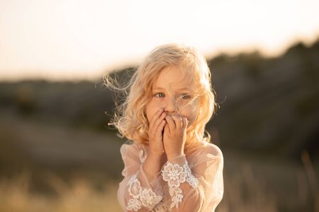 Portrait of a beautiful little princess girl in a pink dress. Posing in a field at sunset.