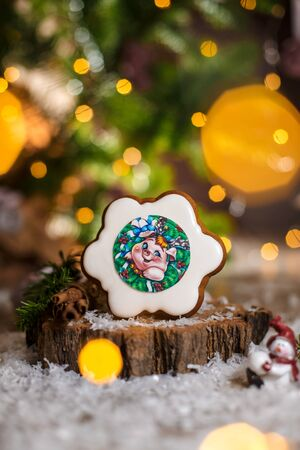 Holiday traditional food bakery. Gingerbread flower with pig portrait inside in cozy warm decoration with garland lights. Imagens