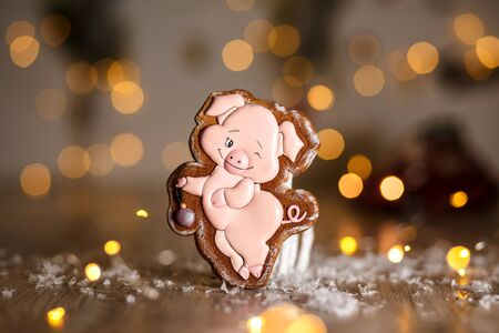 Holiday traditional food bakery. Gingerbread funny piggy in cozy warm decoration with garland lights.