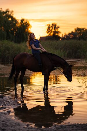 A young girl riding a horse on a shallow lake. A horse runs on water at sunset. Care and walk with the horse. Strength and Beauty. Фото со стока