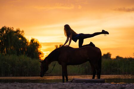 Silhouetted a slender girl practicing yoga on horseback, at sunset the horse stands in the lake. Care and walk with the horse. Strength and Beauty.