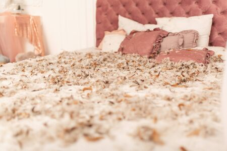 Chic retro king size bed strewn with feathers from the pillow. Pillow fight in the room. 스톡 콘텐츠