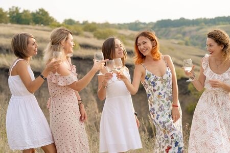 The company of female friends enjoys a summer picnic and raise glasses with wine.