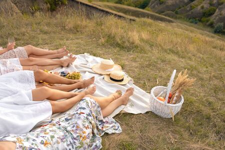 The company of female friends relaxing on summer picnic. Summer rural style picnic concept Banque d'images - 137189621