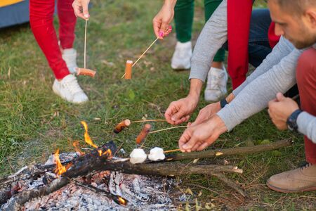 travel, tourism, hike, picnic and people concept - group of happy friends frying sausages on campfire near lake Banco de Imagens - 138420468