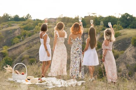 Shoot from back. The company of gorgeous female friends having fun, cheers and drink wine, and enjoy hills landscape picnic