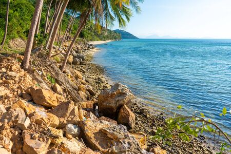 Sandy beach of a paradise deserted tropical island. Palm trees overhang on the beach. White sand. Blue water of the ocean. Rest away from people. 版權商用圖片