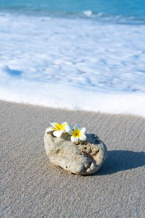 A small stone of an interesting smooth form is washed by waves on the beach. Calm and relaxation by the sea concept. Фото со стока