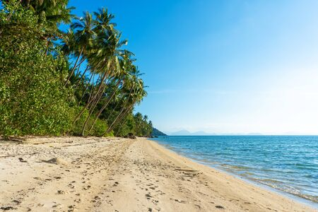 Sandy beach of a paradise deserted tropical island. Palm trees overhang on the beach. White sand. Blue water of the ocean. Rest away from people.