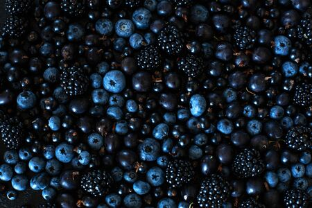 Mix set layout of different types of black berries on a black table. Stylish seasonal vitamins.