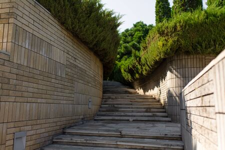 Stone stairs in the green garden. Well-groomed area.