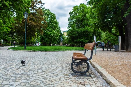 Green park in prague. An empty bench near which a pigeon sits. 版權商用圖片