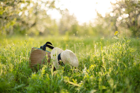Stylish wicker straw hat and bag on the green grass in the garden. Summer adventures.