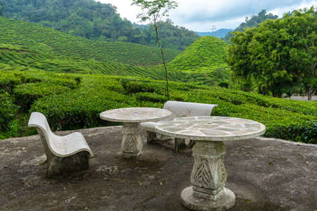 A place for relaxation and tea drinking made of stone furniture overlooking a green valley of tea bushes