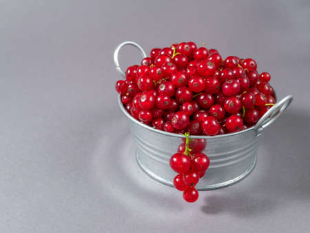 A metal basin filled with red currants.