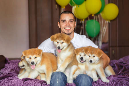 Handsome guy have fun hugs and play with akita inu puppies.