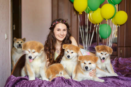 Handsome brunette girl have fun hugs and play with akita inu puppies. Foto de archivo