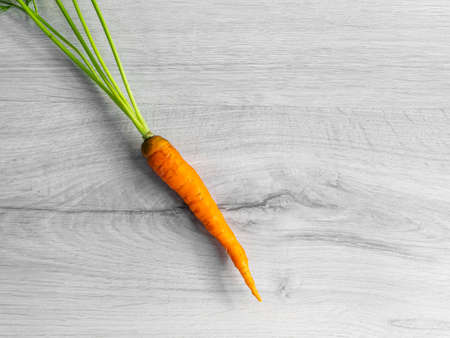 Orange natural carrot with a fluffy long tail. On a light background.