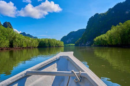 Boat trip along the river in the mangrove forests. Foto de archivo