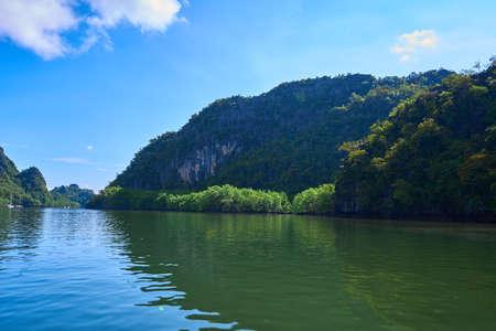 Pure nature landscape river among mangrove forests. Foto de archivo