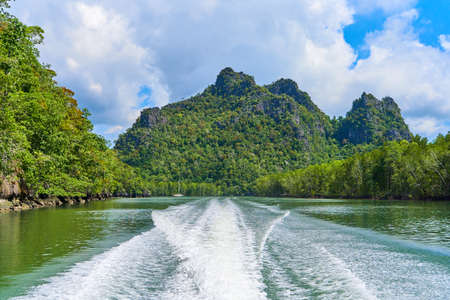 boat travel on river with exciting view rock overgrown green trees.