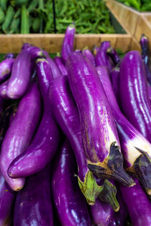 A crate of eggplants in the grocery store's vegetable section. Banque d'images