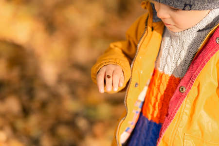 A child rejoices playing with a ladybug in an autumn park. Happy childhood.