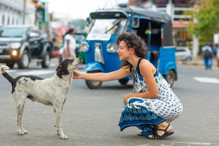 The girl communicates with a stray dog on the street. Pet the dog. Standard-Bild