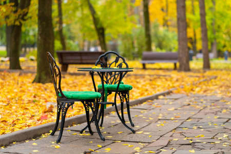 Autumn park with fallen yellow leaves. A place to relax with a cup of hot coffee.
